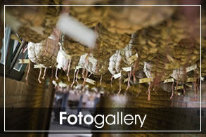podere-fotogallery